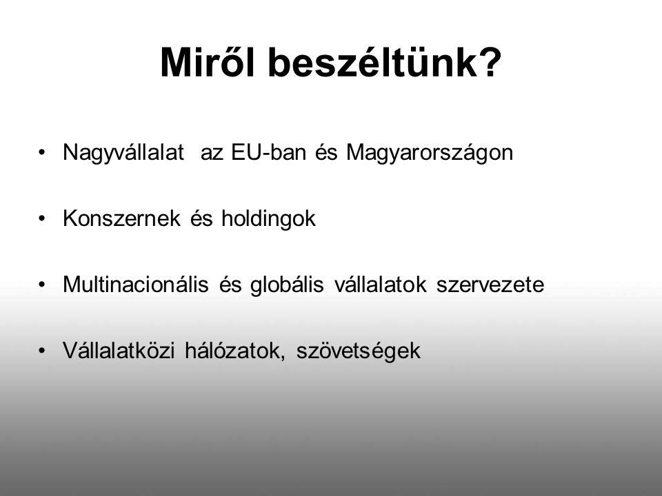 Miről beszéltünk Nagyvállalat az EU-ban és Magyarországon