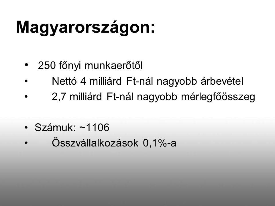 Magyarországon: 250 főnyi munkaerőtől