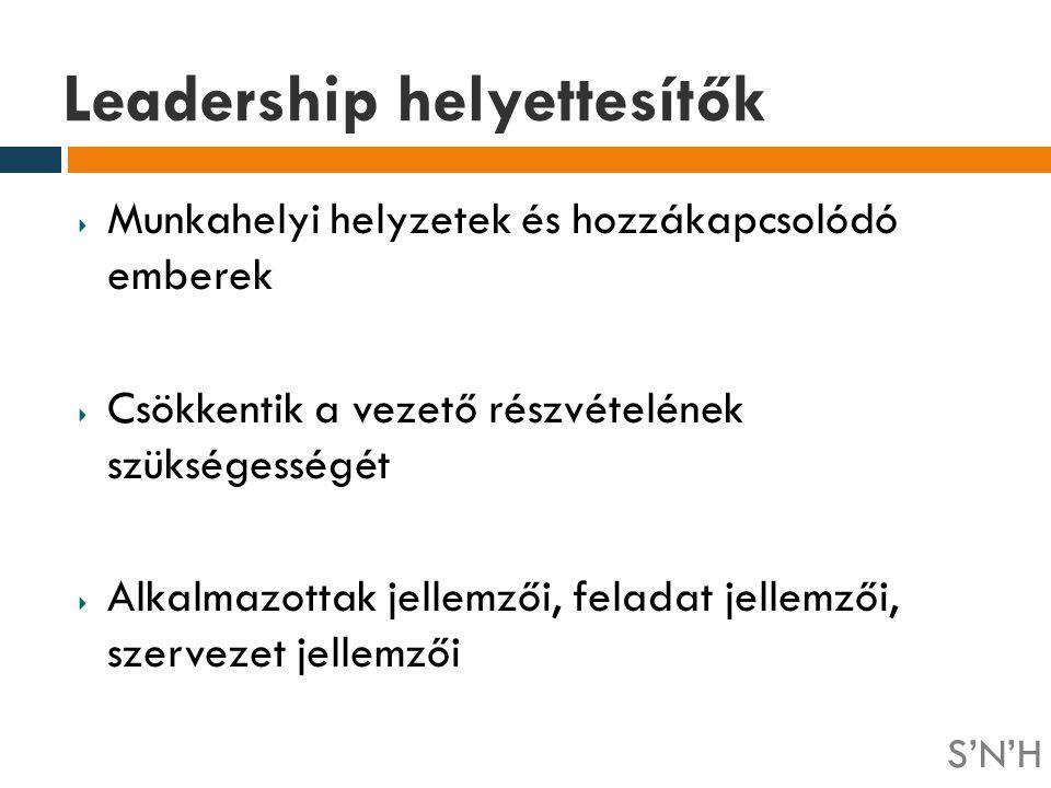 Leadership helyettesítők