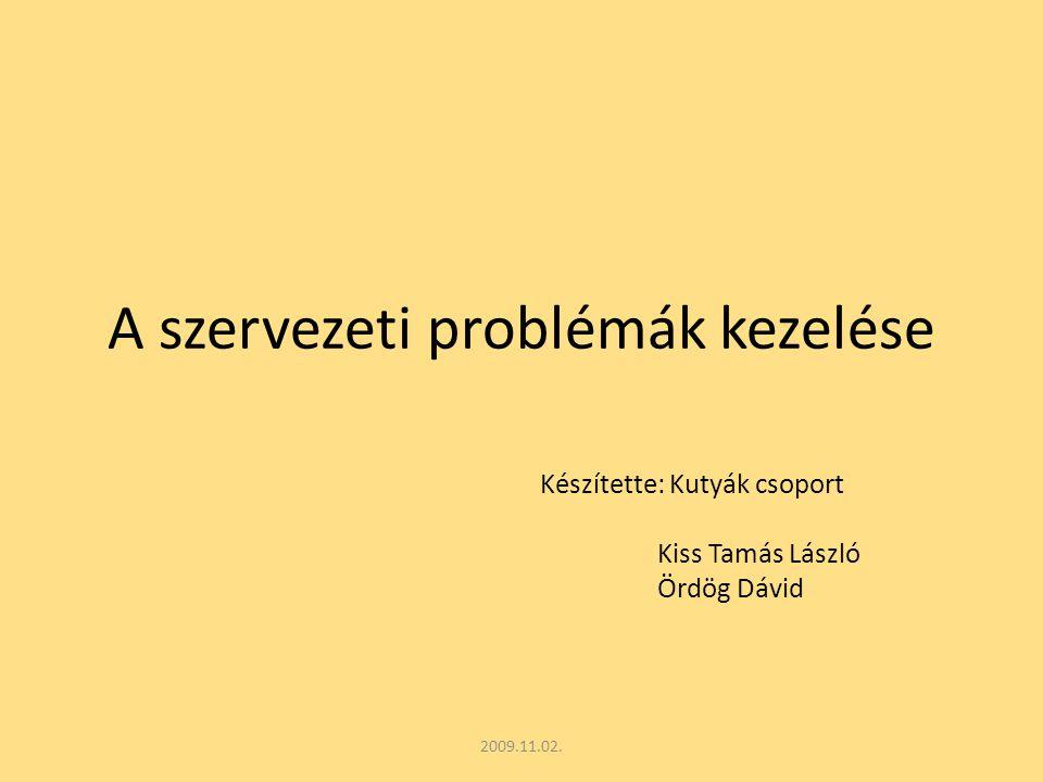 A szervezeti problémák kezelése