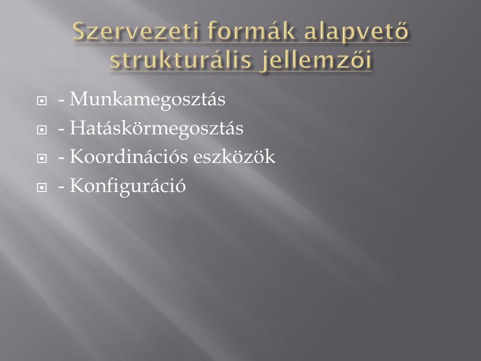 Szervezeti formák alapvető strukturális jellemzői