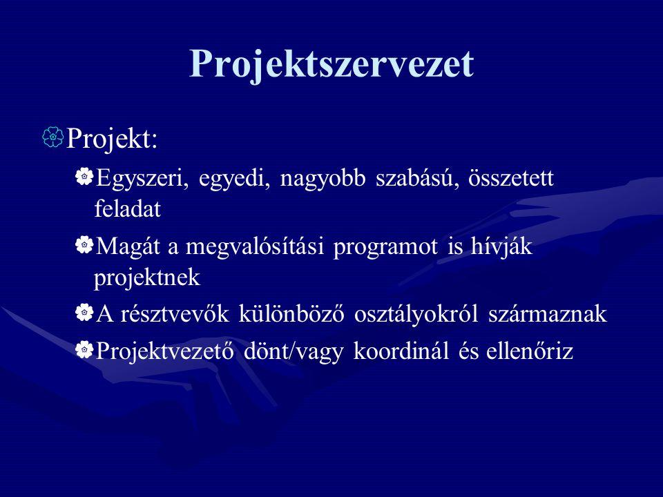 Projektszervezet Projekt: