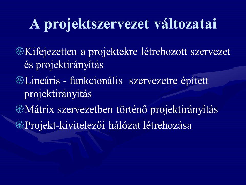 A projektszervezet változatai