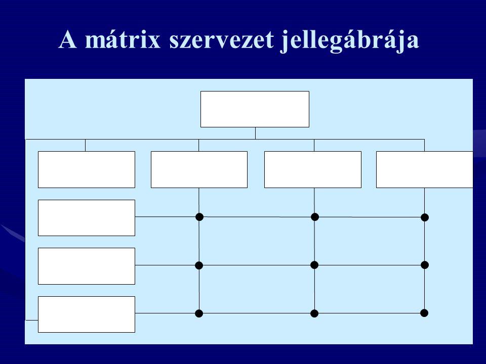 A mátrix szervezet jellegábrája