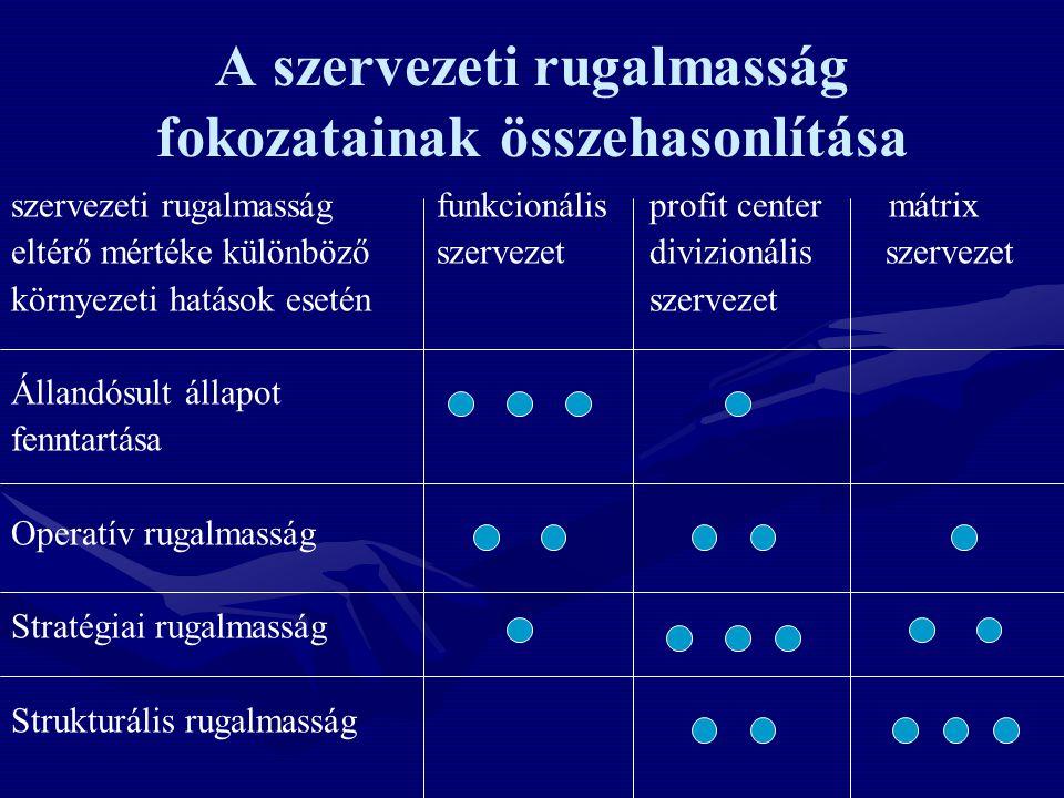 A szervezeti rugalmasság fokozatainak összehasonlítása
