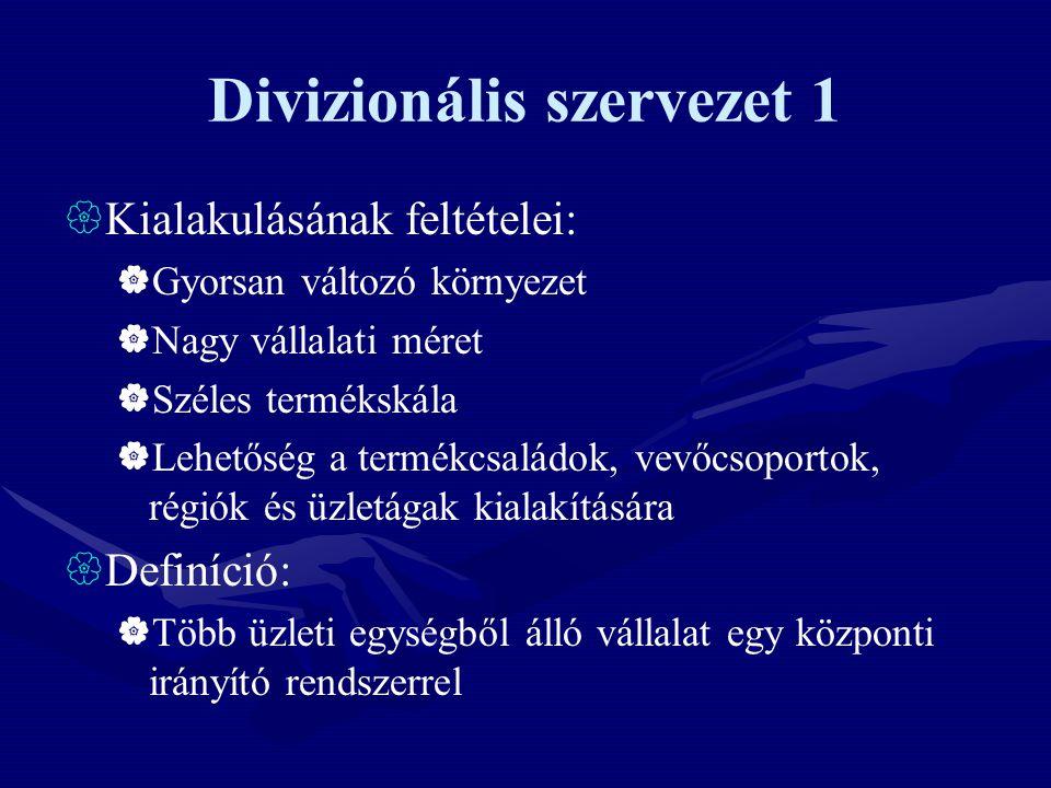 Divizionális szervezet 1