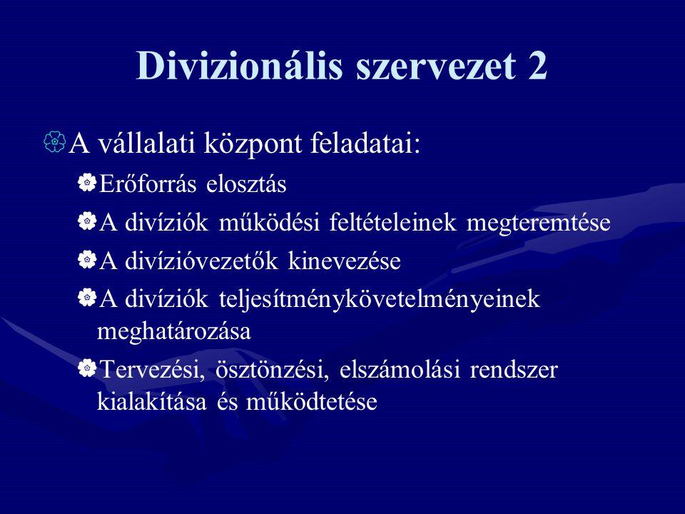 Divizionális szervezet 2