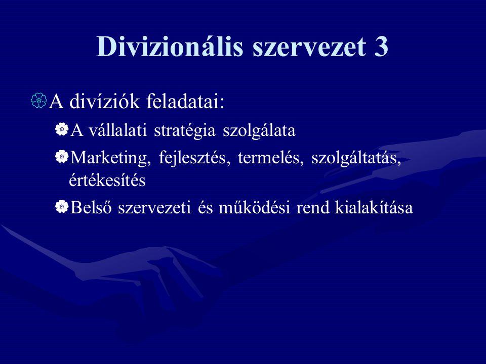 Divizionális szervezet 3