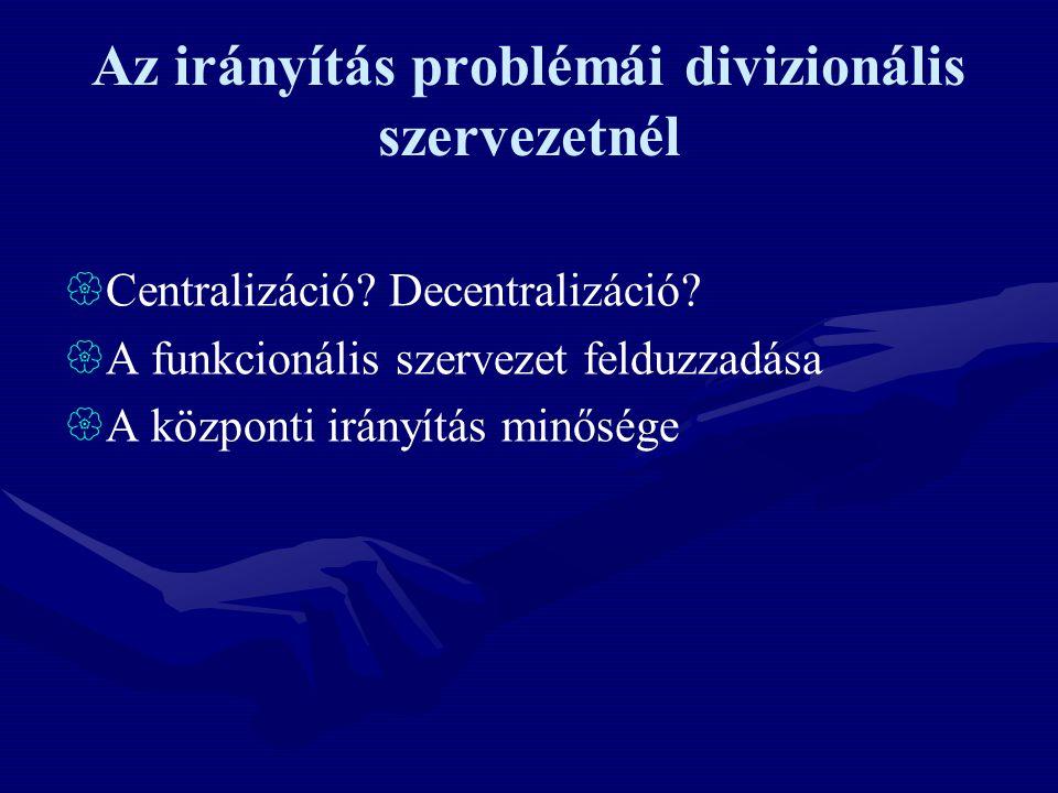 Az irányítás problémái divizionális szervezetnél