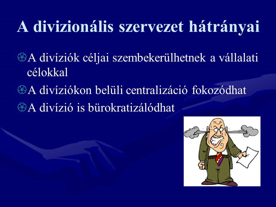 A divizionális szervezet hátrányai