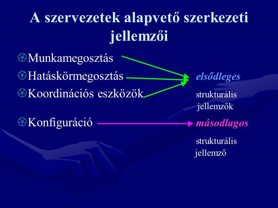 A szervezetek alapvető szerkezeti jellemzői