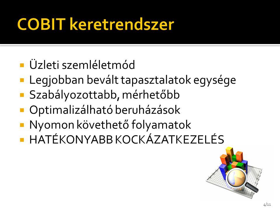 COBIT keretrendszer Üzleti szemléletmód