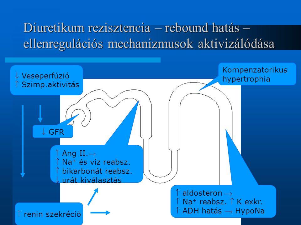 Diuretikum rezisztencia – rebound hatás – ellenregulációs mechanizmusok aktivizálódása