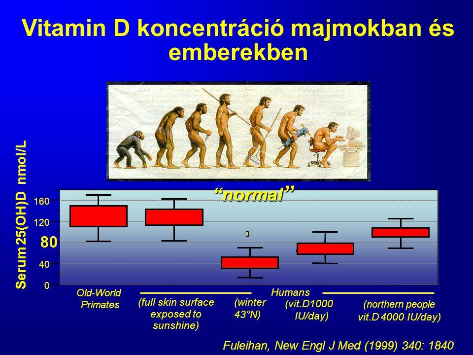 Vitamin D koncentráció majmokban és emberekben