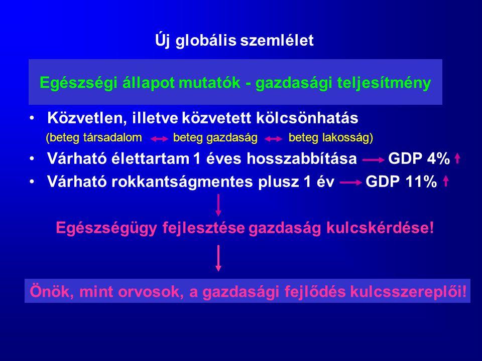 Egészségi állapot mutatók - gazdasági teljesítmény