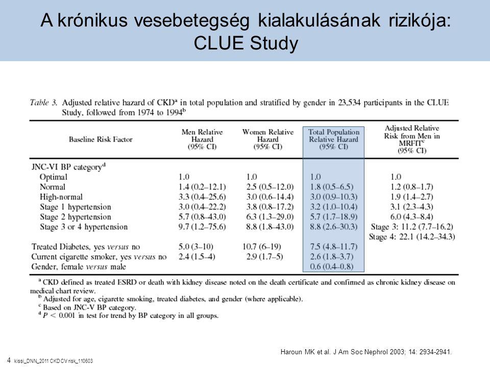A krónikus vesebetegség kialakulásának rizikója: CLUE Study