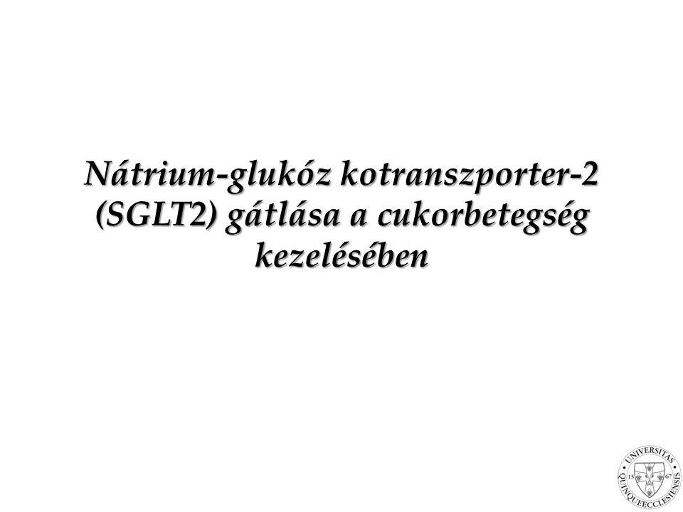 Nátrium-glukóz kotranszporter-2 (SGLT2) gátlása a cukorbetegség kezelésében