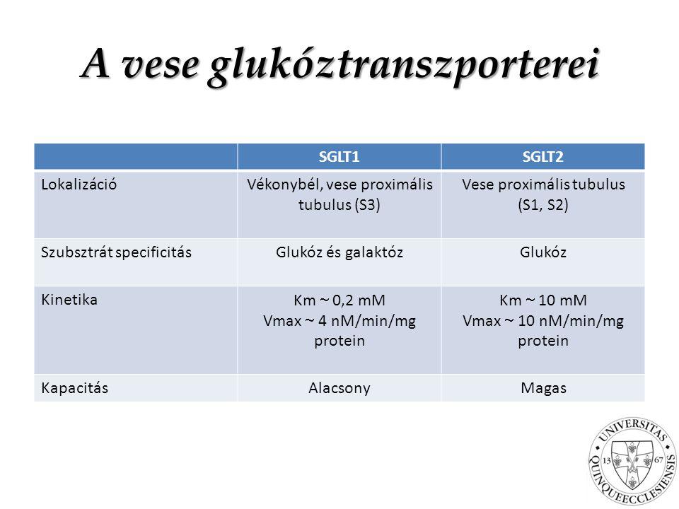 A vese glukóztranszporterei