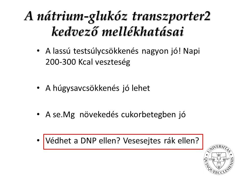 A nátrium-glukóz transzporter2 kedvező mellékhatásai