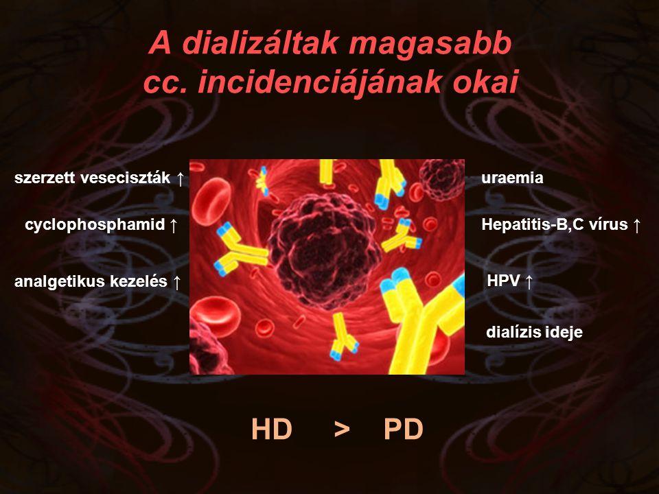 A dializáltak magasabb cc. incidenciájának okai