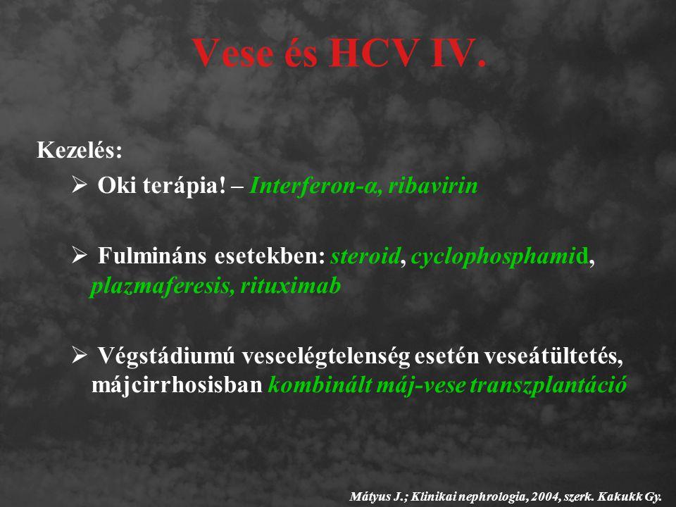 Vese és HCV IV. Kezelés: Oki terápia! – Interferon-α, ribavirin