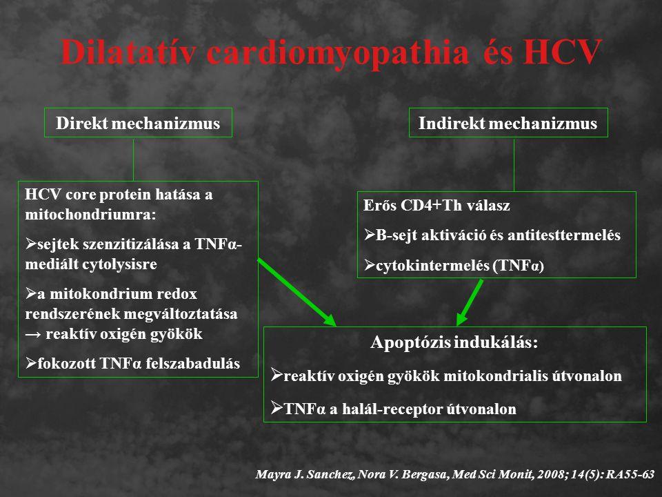 Dilatatív cardiomyopathia és HCV