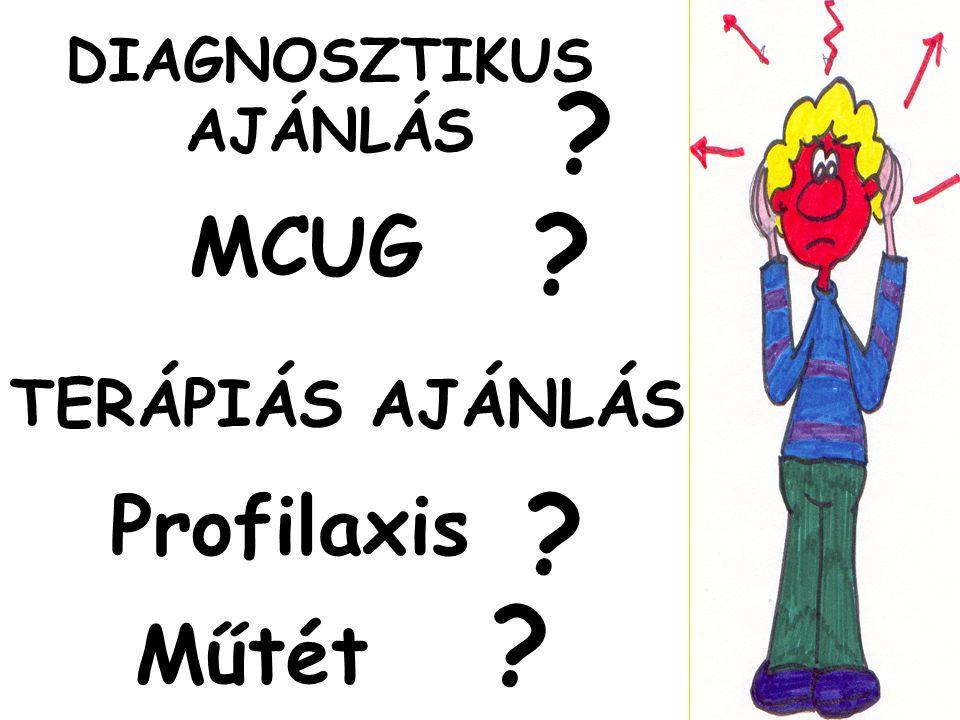 DIAGNOSZTIKUS AJÁNLÁS