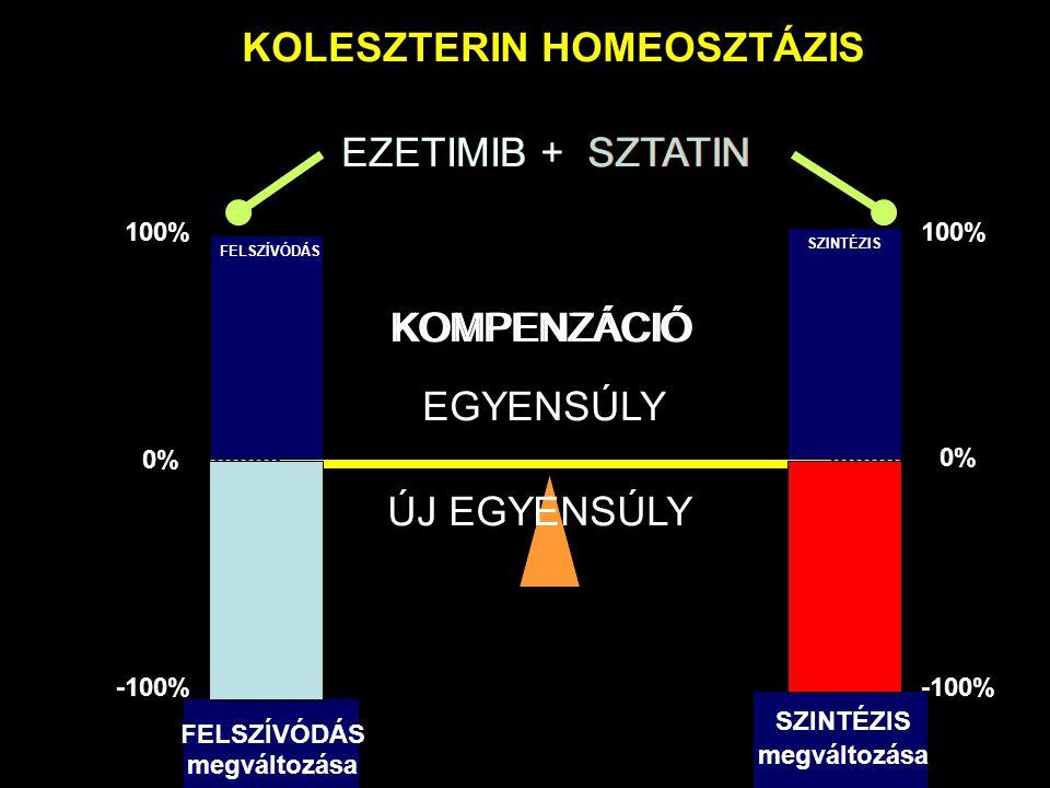 KOLESZTERIN HOMEOSZTÁZIS