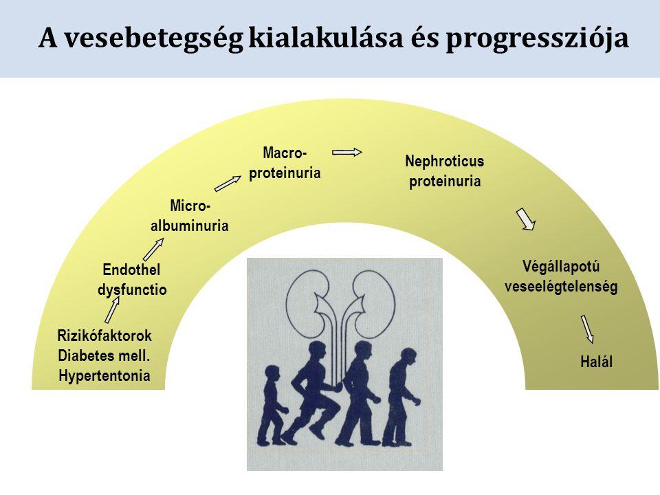 A vesebetegség kialakulása és progressziója