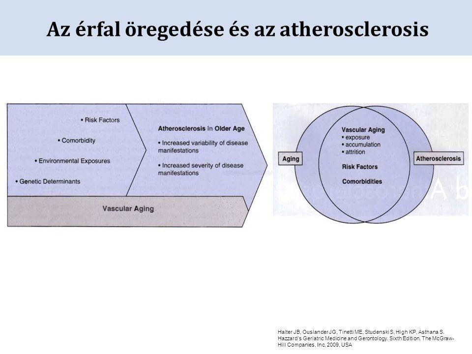 Az érfal öregedése és az atherosclerosis