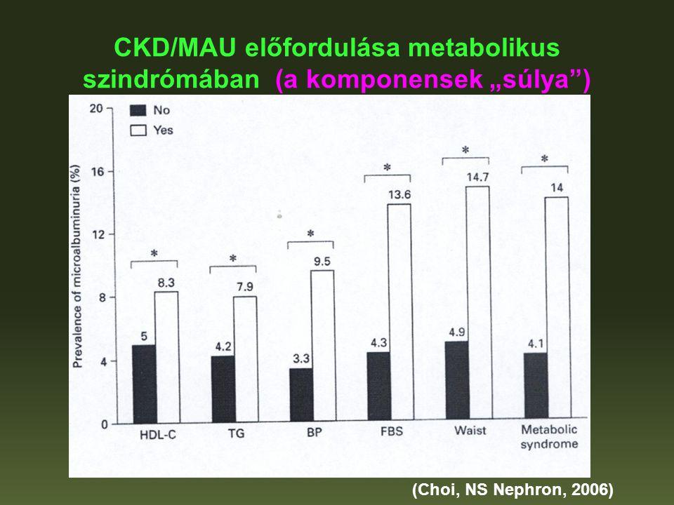 """CKD/MAU előfordulása metabolikus szindrómában (a komponensek """"súlya )"""