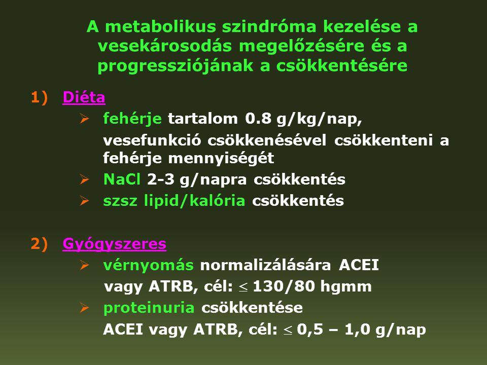 A metabolikus szindróma kezelése a vesekárosodás megelőzésére és a progressziójának a csökkentésére