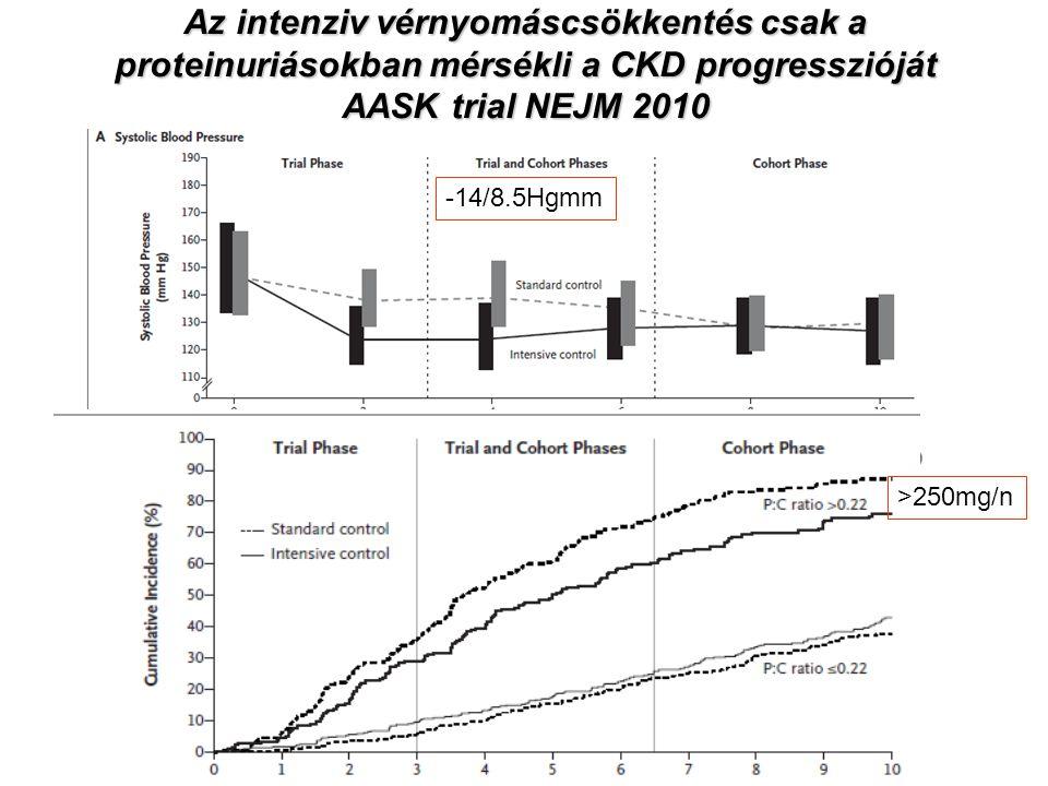 Az intenziv vérnyomáscsökkentés csak a proteinuriásokban mérsékli a CKD progresszióját AASK trial NEJM 2010
