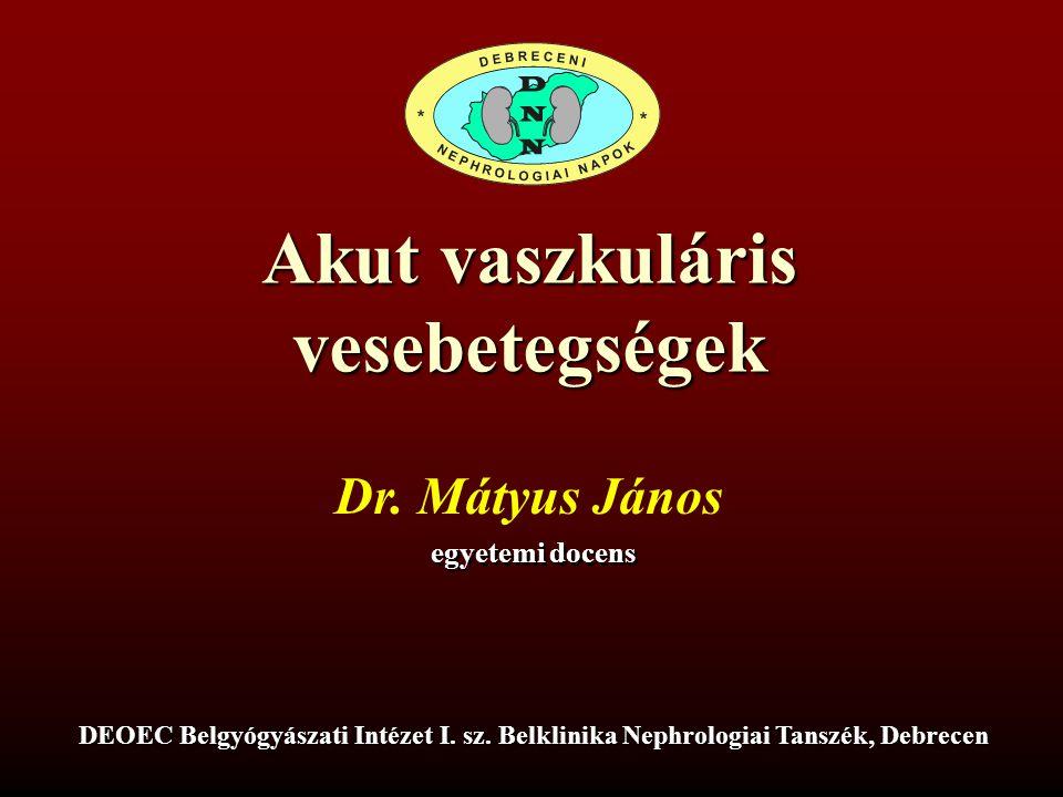 Akut vaszkuláris vesebetegségek