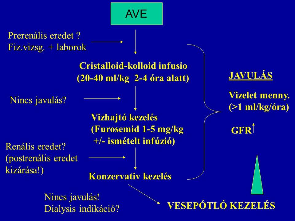 AVE Prerenális eredet Fiz.vizsg. + laborok