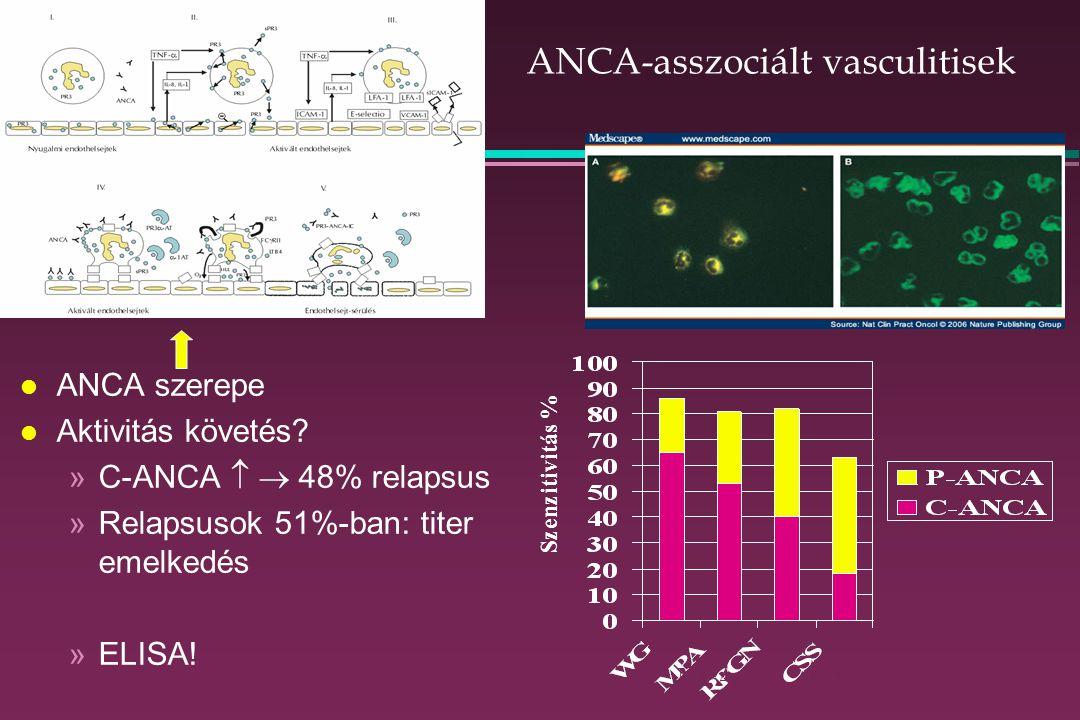 ANCA-asszociált vasculitisek