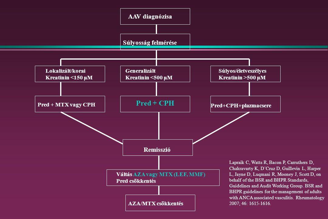 Pred + CPH AAV diagnózisa Súlyosság felmérése Remisszió