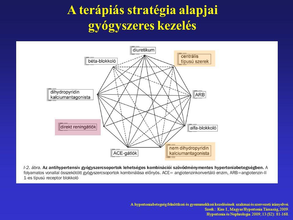 A terápiás stratégia alapjai