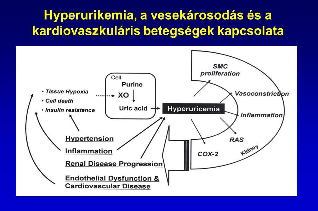 Hyperurikemia, a vesekárosodás és a kardiovaszkuláris betegségek kapcsolata