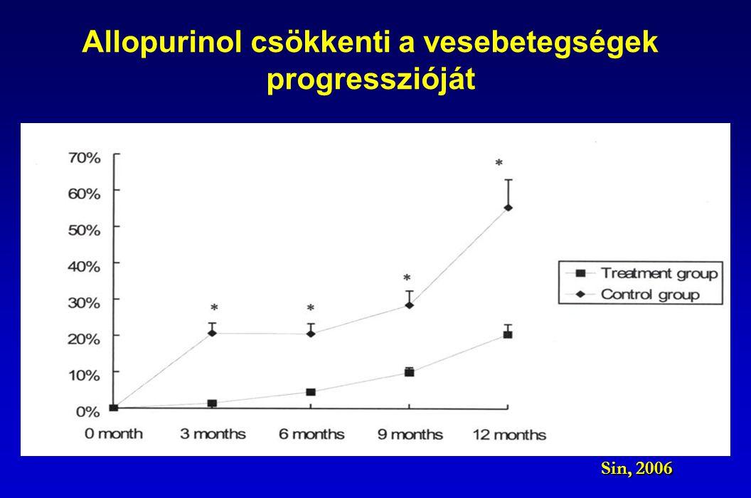 Allopurinol csökkenti a vesebetegségek progresszióját