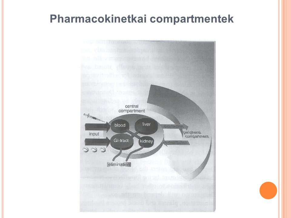 Pharmacokinetkai compartmentek