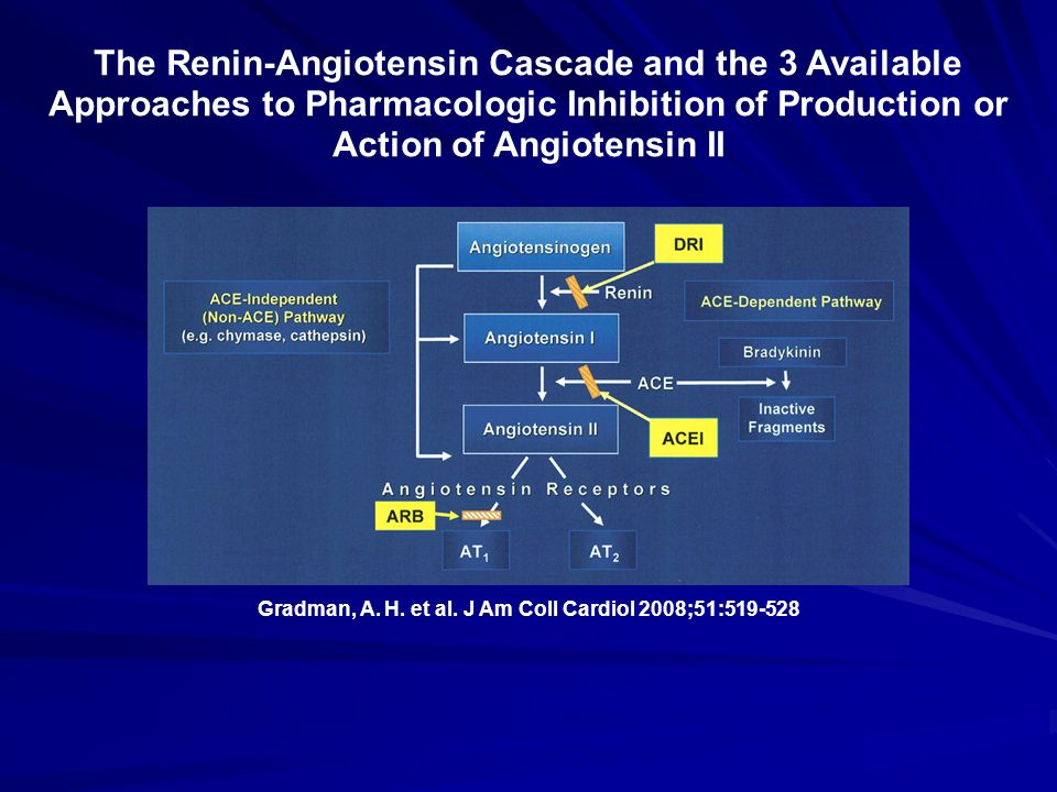Gradman, A. H. et al. J Am Coll Cardiol 2008;51:519-528