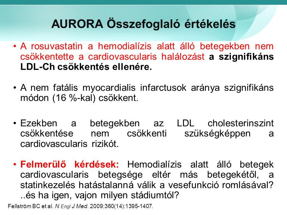 AURORA Összefoglaló értékelés