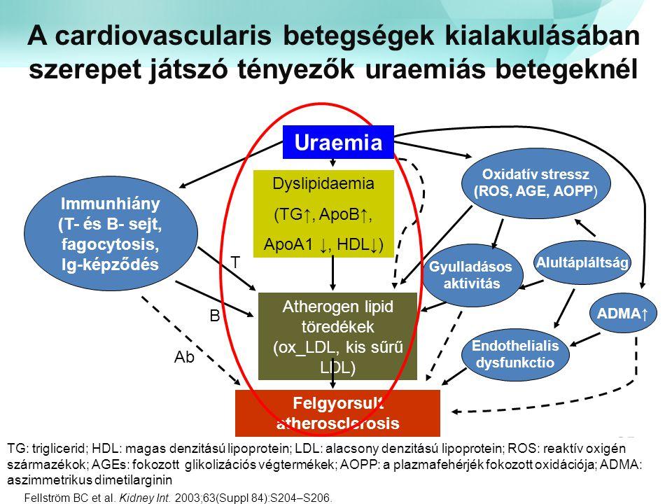 Felgyorsult atherosclerosis