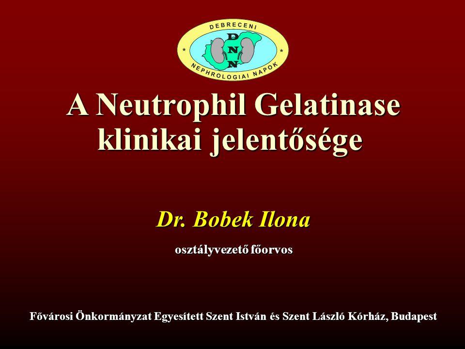 A Neutrophil Gelatinase osztályvezető főorvos