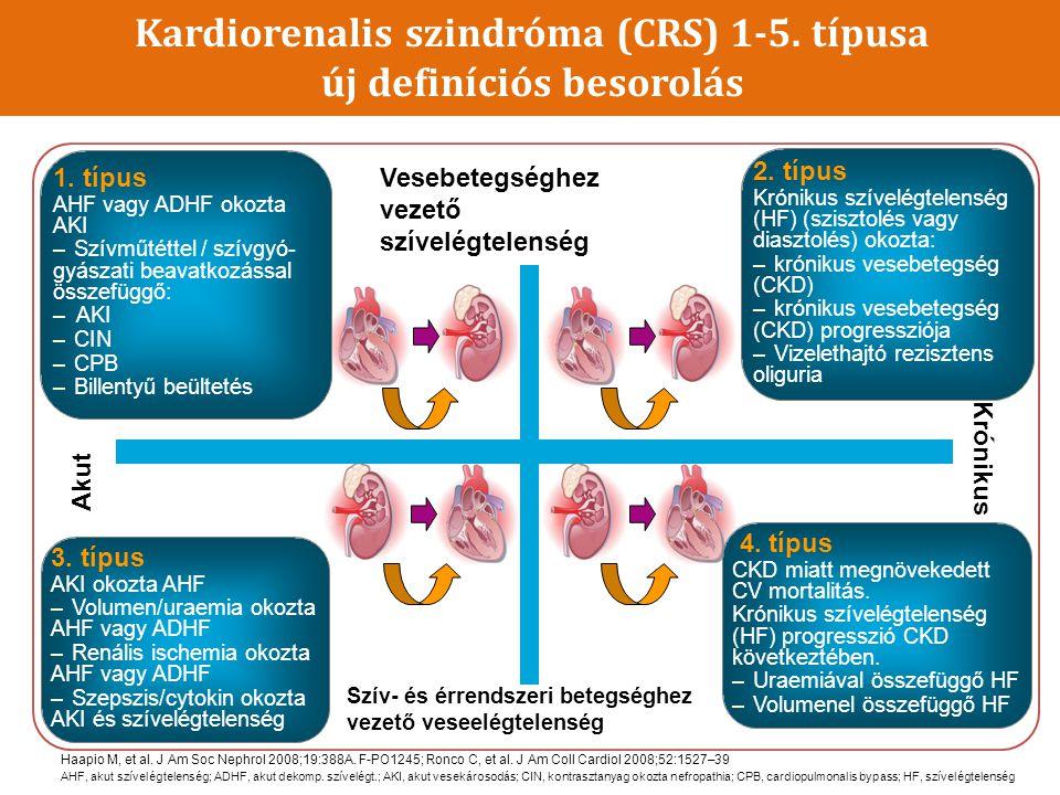 Kardiorenalis szindróma (CRS) 1-5. típusa új definíciós besorolás