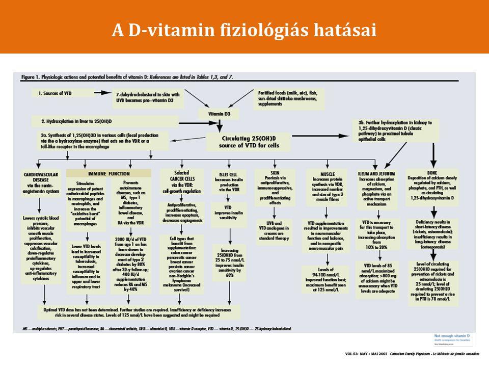 A D-vitamin fiziológiás hatásai