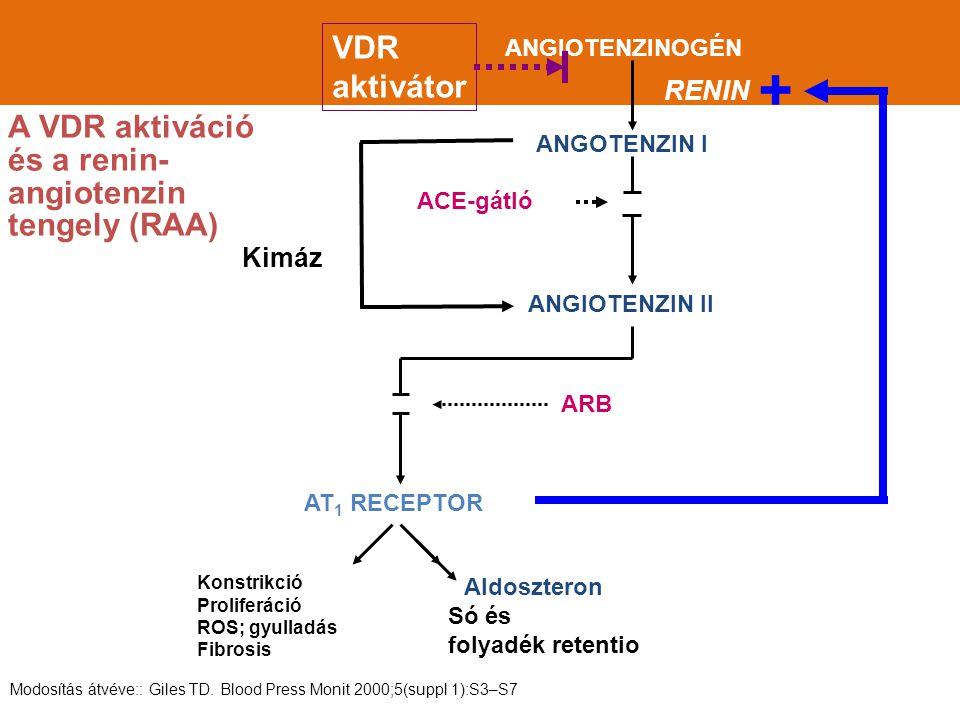+ VDR aktivátor A VDR aktiváció és a renin-angiotenzin tengely (RAA)