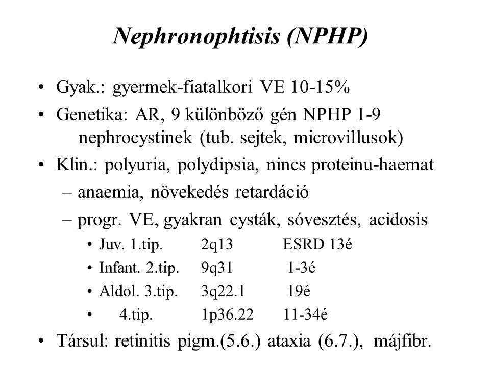 Nephronophtisis (NPHP)