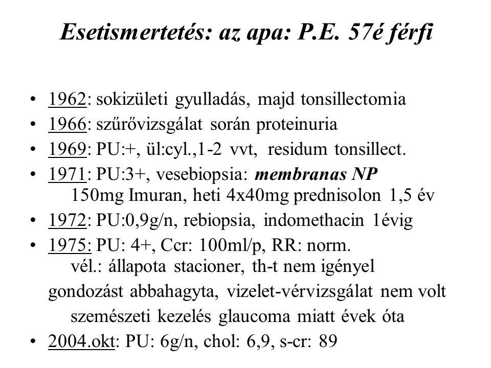 Esetismertetés: az apa: P.E. 57é férfi